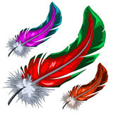 Few colorful magical fluffy feathers isolated. Vector illustration Royalty Free Stock Photos