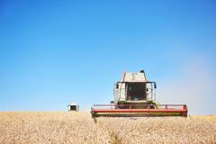 A few combines cutting a swath through the middle of a wheat field during harvest.  Royalty Free Stock Images