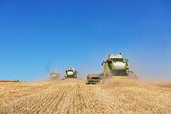 A few combines cutting a swath through the middle of a wheat field during harvest.  Royalty Free Stock Photography
