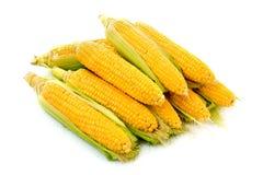 Few corn isolated Stock Photo