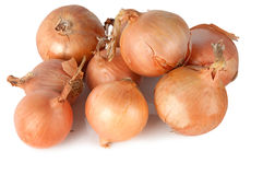Few different onions Stock Images