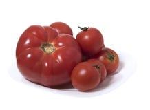 Few dojrzali pomidory na białym talerzu Obrazy Royalty Free