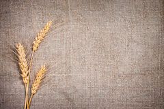 Few ears of wheat on sacking fabric Stock Photography