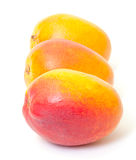 Few Fresh Mango Royalty Free Stock Photo