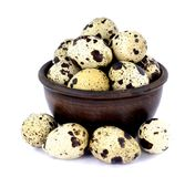 Quail eggs in a bowl isolated on white background. Few fresh quail eggs in a ceramic bowl isolated on white background Royalty Free Stock Images
