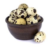 Quail eggs in a bowl isolated on white background. Few fresh quail eggs in a ceramic bowl isolated on white background Stock Photography