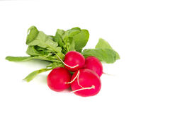Few fresh radish on white Royalty Free Stock Photos