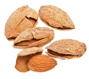Few fried almond nuts close up Royalty Free Stock Photo