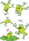 Few frogs. The illustration shows of some cartoon frogs in various poses, as well as insects and water lilies. Funny frog on a white background, are on separate vector illustration