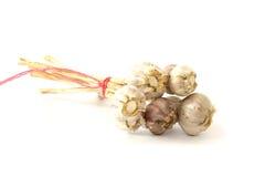 Few garlic heads. On white background royalty free stock photo