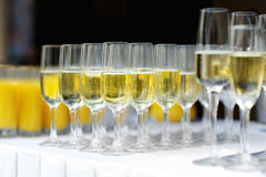 Few glasses of wine Royalty Free Stock Photo