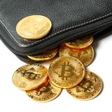 A few golden coins with the sign of bitcoin fell out of a black leather purse on a white background.  Royalty Free Stock Images
