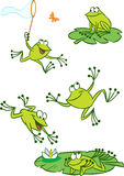 Few green frogs. The illustration shows of some cartoon frogs  in various poses, as well as insects and water lilies. Funny frog on a white background, are on Stock Photos