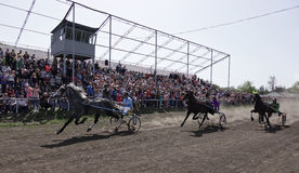 Few horses with carriage and riders in motion on racetrack Stock Image