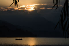 Few, jezioro zdjęcie royalty free