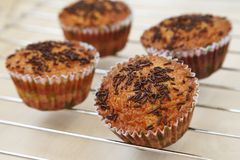 Few muffins with chocolate Stock Photos