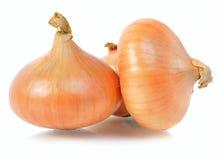 Few onion Stock Photography