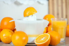 Few oranges near the hand juicer on   table. Royalty Free Stock Photos