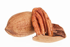 Few pecan nuts, one cracked Stock Photography