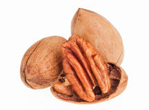 Few pecan nuts, one cracked Stock Image