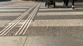 Few pedestrian cross over small road by zebra. Pedestrian foot cross over small road by zebra crossing. Few people step across road by dry crosswalk. Panda stock video footage