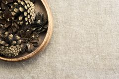 A few pine cones Royalty Free Stock Image