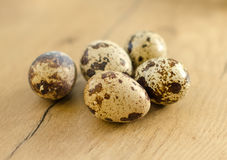 Few quail eggs. Royalty Free Stock Photo
