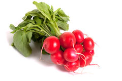 Few raw radishes Royalty Free Stock Images