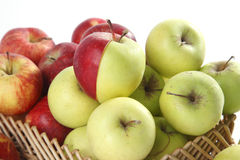 Few red and green apples Stock Image