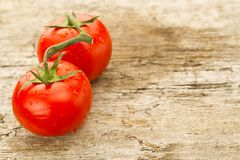 Few red tomatoes branch Royalty Free Stock Photos