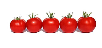 Few red tomatoes isolated Stock Photos
