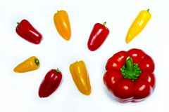A few red and yellow peppers. Good quality close up photo of fresh various peppers served on some snow white surface. There`re lots of washed peppers on the Stock Images