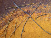 Scattered Twigs in Rusted Metal Urn stock images