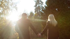 Few shots. Back view of elegant couple in black coats walking in the park, holding their hands, looking at each other. Romantic atmosphere. Happy together stock footage