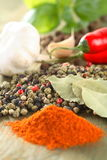 A few spice. A few spicy spice on the table Stock Images