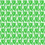 Tło zieleń liście pięknie zawijający Obraz Stock