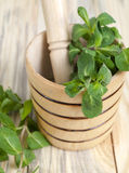 Mint and mortar Stock Photography