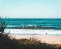 Few surfingowowie przy wybrzeżem morze fotografia stock