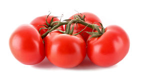 Few tomatoes isolated stock images
