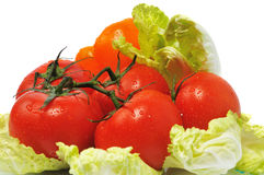 Few tomatos with leaves cabbage Stock Photography