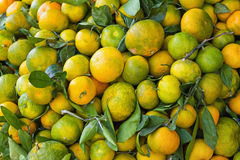 A few underripe tangerines in a wooden crate for sale Royalty Free Stock Images