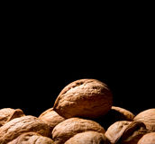 Few walnuts Royalty Free Stock Photography