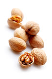Few walnuts Stock Image