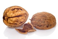 A few walnuts. Against white background stock photography