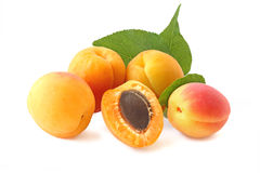 Few whole apricots and half with twig isolated on white Stock Photos