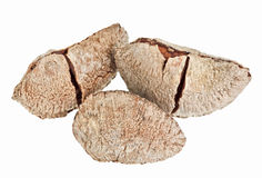 Few whole shelled Brazil nuts Royalty Free Stock Photography