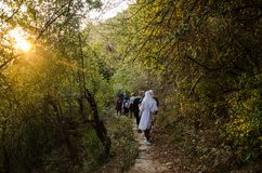 Women on hiking trip in Forest of Himaayas. Few women on hiking into the wood of mountains. Trekking on a moutains of Himalayas royalty free stock photography