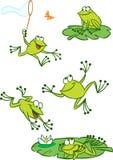 Few zielone żaby ilustracja wektor