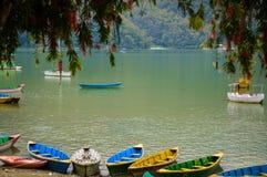 湖Fewa 库存照片