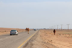 Feynan, Jordan - March 26,2015: Car driving in the desert of Jordan Stock Photo
